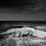 The Wonderful Seas of Alessandro Puccinelli